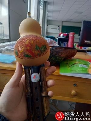 interlace,1# - 葫芦丝乐器,儿童小学生入门男女自学