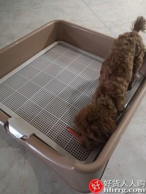 interlace,1# - 狗狗厕所大号拉屎,大型犬坐便器