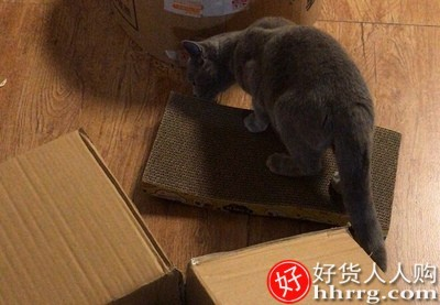 interlace,1# - 瓦楞纸猫爪板,猫咪磨抓器磨爪板