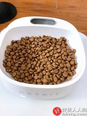 interlace,1# - 佩宠物智能称重碗,可称重猫碗狗盆