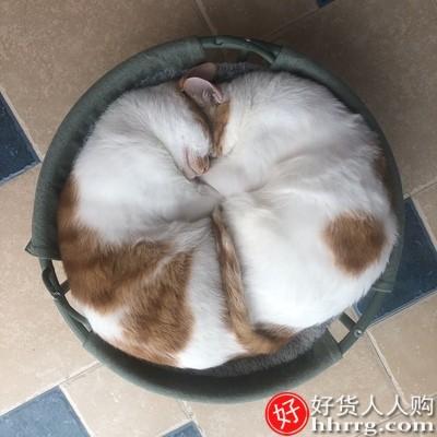 interlace,1# - 小佩宠物按摩粉饼梳,狗毛梳子撸猫手套