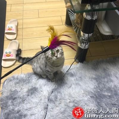 interlace,1# - 猫玩具套装自嗨激光笔,逗猫棒羽毛铃铛不倒翁