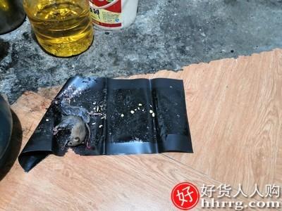 interlace,1# - 粘老鼠胶贴灭鼠抓粘鼠板沾,防大老鼠强力家用捕鼠器