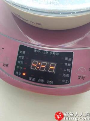 小熊养生壶,全自动玻璃多功能电热花茶壶