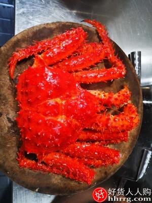 智利进口帝王蟹,新鲜熟冻海鲜水产大螃蟹皇帝蟹