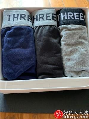 三枪男士内裤,棉质平角裤