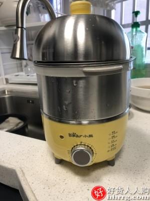 小熊煮蛋器,自动断电家用迷你蒸蛋器.