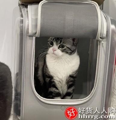 interlace,1# - 宠觅猫包外出便携猫咪双肩背包,狗狗大号容量两只猫猫箱太空舱
