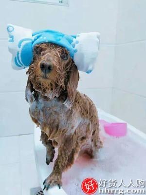 interlace,1# - 宠物狗狗沐浴露,杀菌除臭持久留香专用香波泰迪比熊用品洗澡液