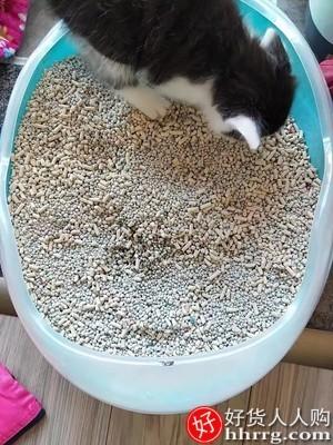 interlace,1# - 猫砂膨润土除臭无尘,猫沙大包实惠装一大袋猫咪包邮