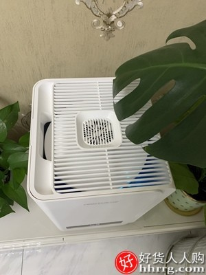 interlace,1# - 舒乐氏无雾加湿器,家用低噪卧室空调除菌空气净化大容量