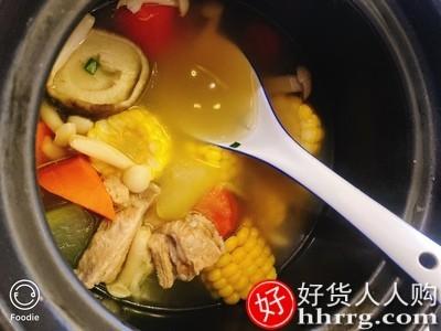 interlace,1# - 小熊砂锅炖锅,家用燃气煲汤煲仔饭陶瓷煲耐高温小号专用沙锅