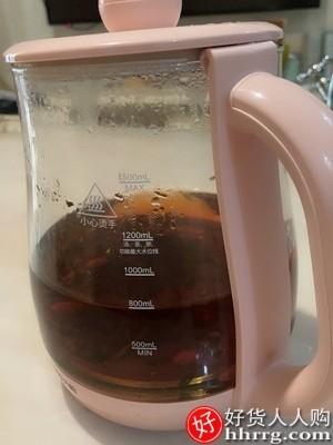 interlace,1# - 九阳养生壶家用多功能煮茶器,办公室小型全自动加厚玻璃养身花茶壶