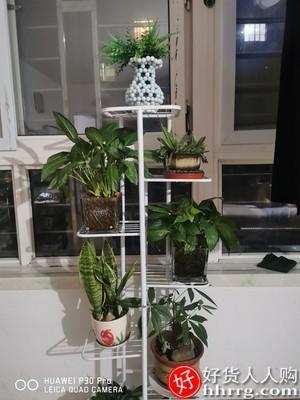 interlace,1# - 索尔诺花架铁艺花盆多层挂架,北欧室内家用阳台装饰置物架