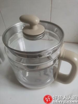interlace,1# - 小熊全自动玻璃养生壶,多功能电热花茶壶家用养身煮茶器