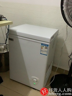interlace,1# - 夏新家用小型保鲜冷柜,冷冻两用柜卧式冰箱单用节能冰柜