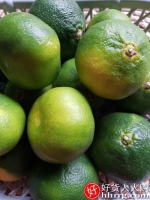 interlace,1# - 福瑞达云南蜜桔新鲜桔子9斤,无籽蜜橘孕妇水果整箱包邮当季青皮橘子