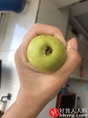 interlace,1# - 红心东北小香水梨,软糯多汁东北特产水果非南果梨