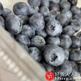 interlace,1# - 甘福园秘鲁蓝莓鲜果,当季新鲜孕妇水果脆甜蓝梅大果甜浆果