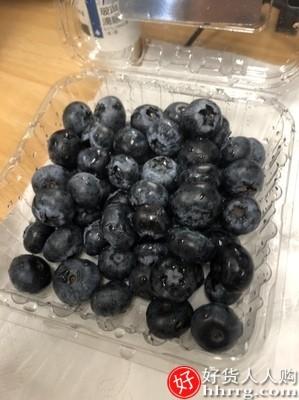 interlace,1# - 果邮进口蓝莓鲜果,当季时令新鲜孕妇水果大果包邮