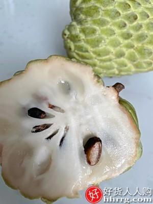 interlace,1# - 小城外台湾牛奶凤梨释迦果,新鲜水果当季佛头果大果番荔枝