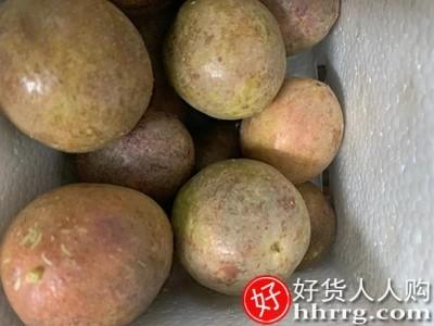 interlace,1# - 纯香果广西百香果,黄金水果百香果浓浆果酱原浆当季整箱