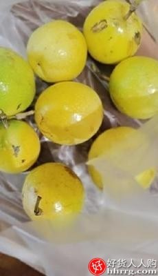interlace,1# - 福瑞达黄金百香果,一级甜黄色百香果新鲜当季水果
